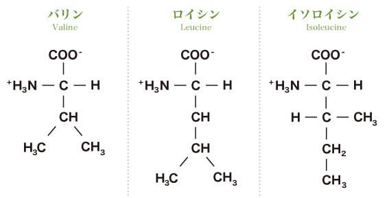 DCCディープチェンジクレアチンの成分BCAA