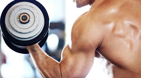 パーフェクトビルドEAAで腕を鍛えるのに効果抜群な筋トレ