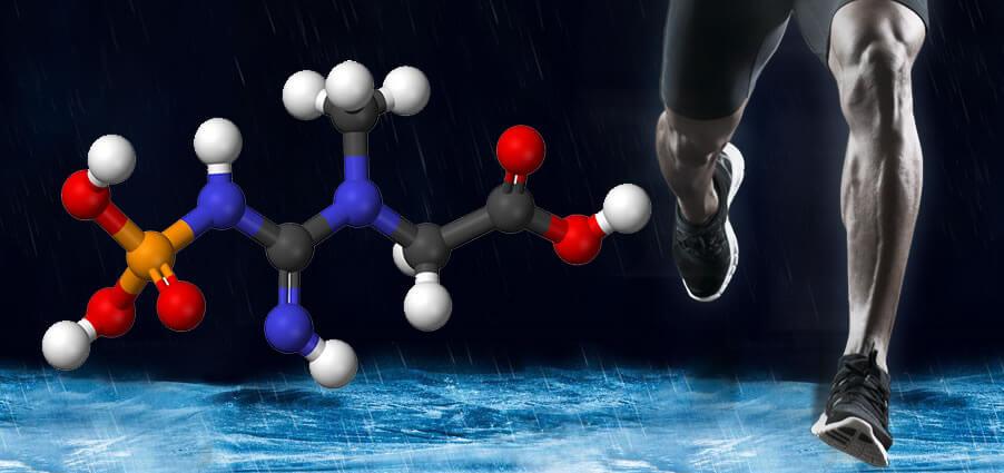 筋肉サプリメントでのクレアチン摂取はスポーツでも活躍