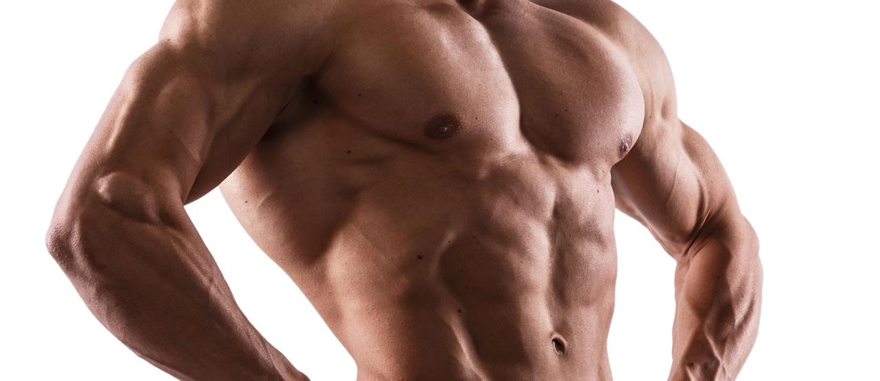 バルクアップHMBプロなら理想的に筋肉が鍛えられる!