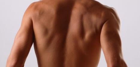 パーフェクトビルドEAAで背筋を鍛えるのに効果抜群な筋トレ